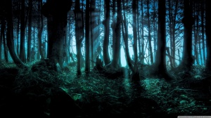 mysterious_forest-wallpaper-1366x768